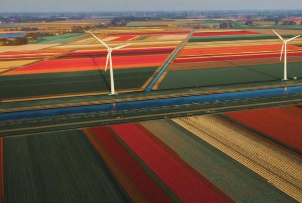 werkgeluk nederland